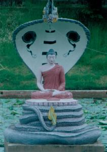 Buddha Serpent